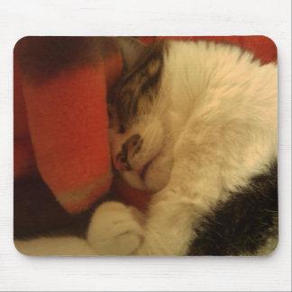 Sleepy Kitty Mouse Pad