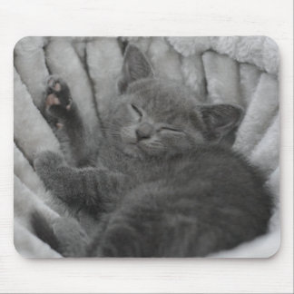 Sleepy kitty mouse pad