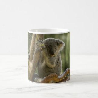 Sleepy Koala Bear Coffee Mug