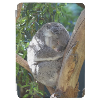 Sleepy Koala iPad Air Cover