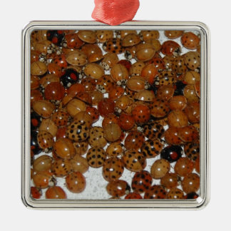 Sleepy Ladybirds Silver-Colored Square Ornament