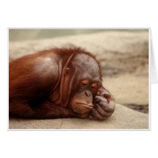 Sleepy Monkey Card