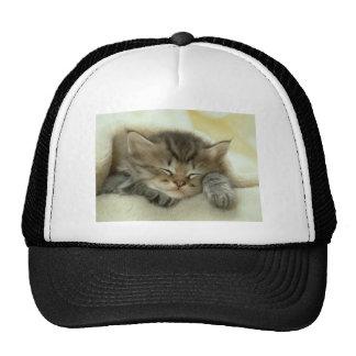Sleepy Nap Time Kitten Hat