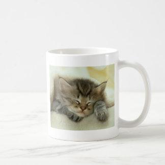 Sleepy Nap Time Kitten Mugs