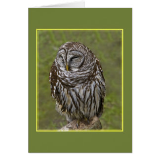 Sleepy Owl Greeting Card