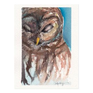 sleepy owl post card