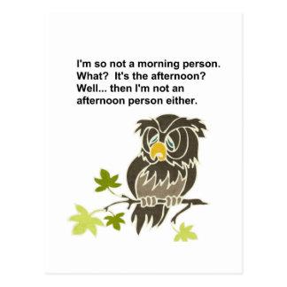 Sleepy Owl Postcard