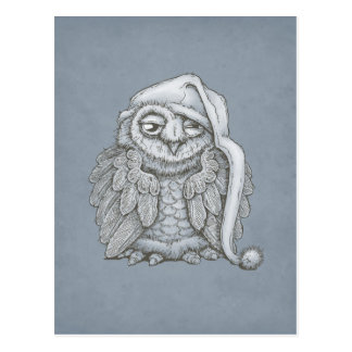 Sleepy Owl Postcard