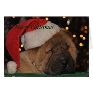Sleepy Puppy Christmas card