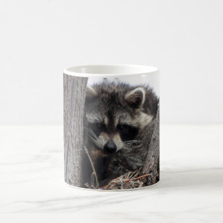 Sleepy Raccoon Coffee Mug
