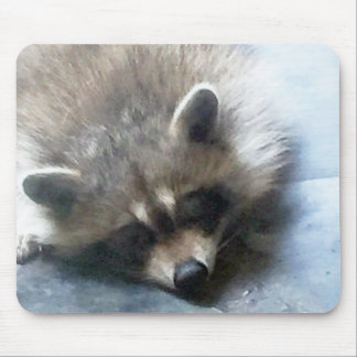 Sleepy Raccoon cub mouse pad