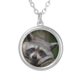 Sleepy Raccoon Silver Plated Necklace
