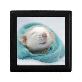 Sleepy Rat Gift Box