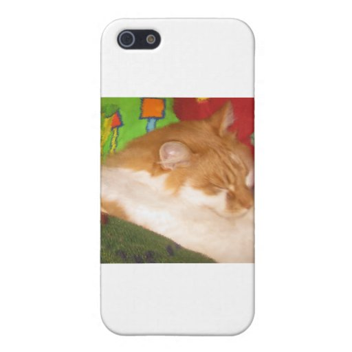 Sleepy Red Cat Cover For iPhone 5