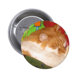 Sleepy Red Cat Pins