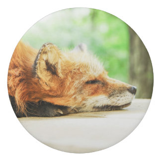 Sleepy Red Fox in the Country Wildlife Eraser