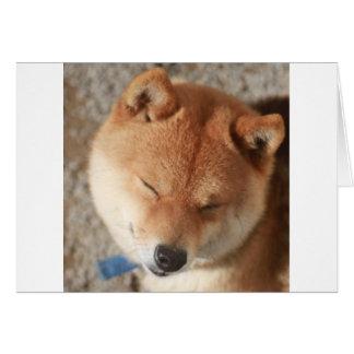 SLEEPY SHIBA CARD