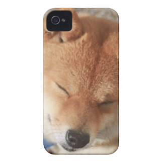 SLEEPY SHIBA Case-Mate iPhone 4 CASES