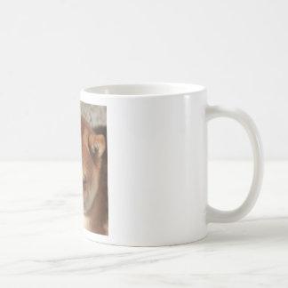 SLEEPY SHIBA COFFEE MUG