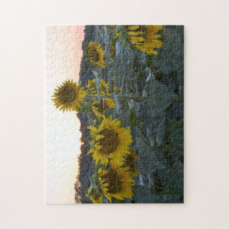 SLEEPY SUNFLOWERS PUZZLE