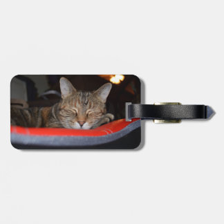 Sleepy Tabby Bag Tag