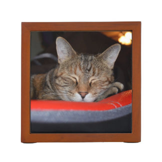 Sleepy Tabby Desk Organizer