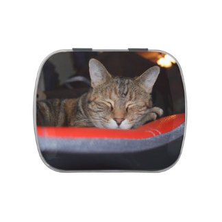 Sleepy Tabby Jelly Belly Candy Tin