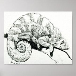 Sleepy the Chameleon in Black and White Poster