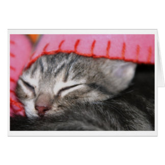 Sleepy time card