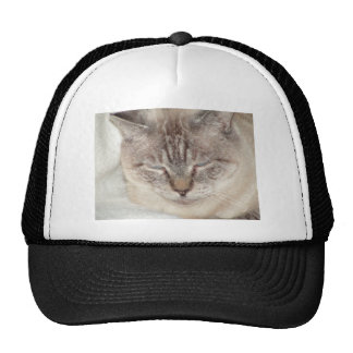 Sleepy Time Hats