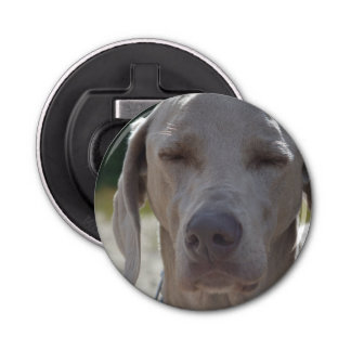 Sleepy Weimaraner Bottle Opener