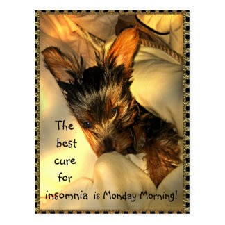 Sleepy Yorkie  Customizable Postcard