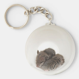 Sleepytime Cute Baby Mice Keychain