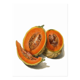 Sliced cantaloupe melon illustration card