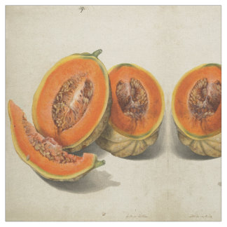 Sliced cantaloupe melon illustration textile fabric
