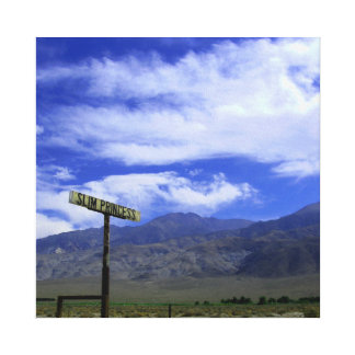 Slim Princess Road Canvas Print