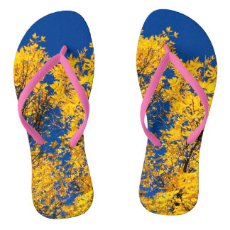 Slippers - autumn leaves flip flops