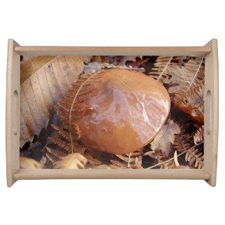 Slippery Jack Mushroom Serving Tray