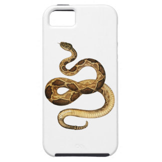 Slithering Expressions iPhone 5 Case