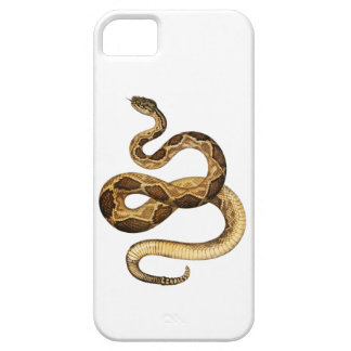 Slithering Expressions iPhone 5 Cover
