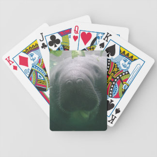 Sloppy Manatee Bicycle Playing Cards