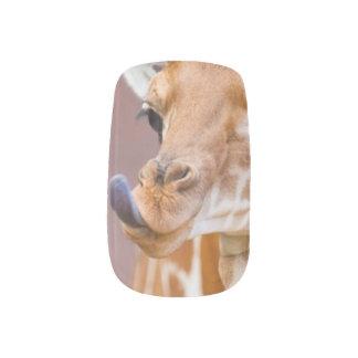 Sloth AND G Minx Nail Art