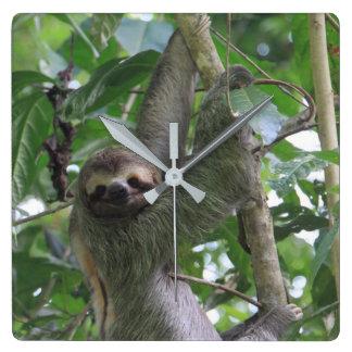 Sloth Clock