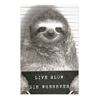Sloth in a Mugshot Stationery