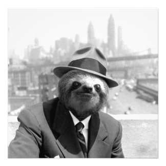 Sloth in New York Photo Print