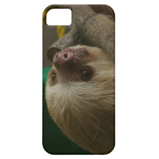 Sloth iPhone 5 Covers