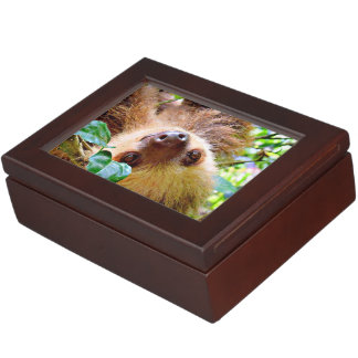 Sloth Keepsake Box