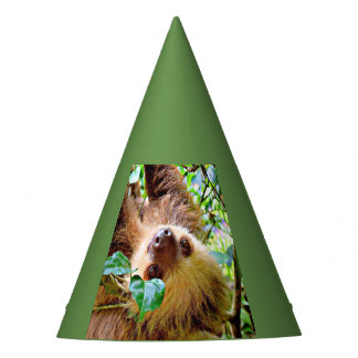 Sloth Party Hat