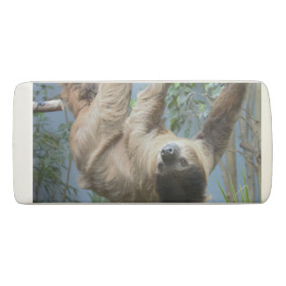Sloth Photo Eraser