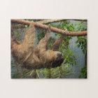 Sloth Photo Puzzle